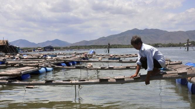 Nhiều hộ dân phải bỏ hoang lồng bè vì cá chết do ô nhiễm trên sông Chà Và - Ảnh: Đ.Hà
