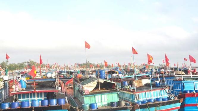 Sắp có cơ chế hỗ trợ một lần sau đầu tư cho chủ đóng mới tàu cá xa bờ.