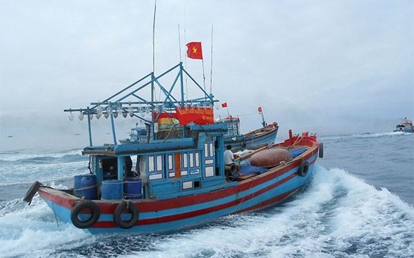 Ngư dân Quảng Ngãi quyết bám ngư trường truyền thống Hoàng Sa của Việt Nam - Ảnh: NLD