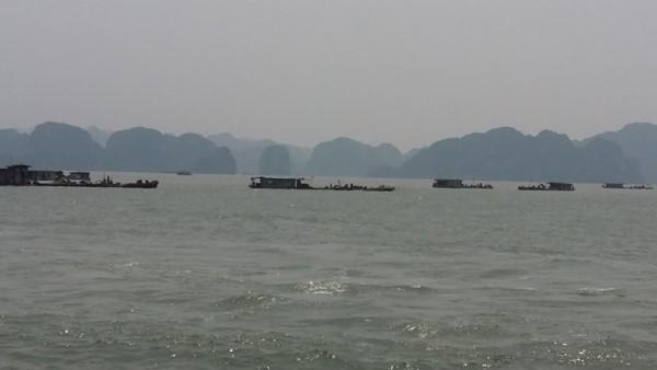 Vẩn tải than đường thủy ở Quảng Ninh