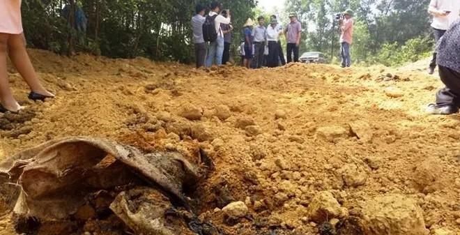 Phát hiện 200 tấn bùn thải trong KCN Formosa Đồng Nai. Ảnh: Infonet