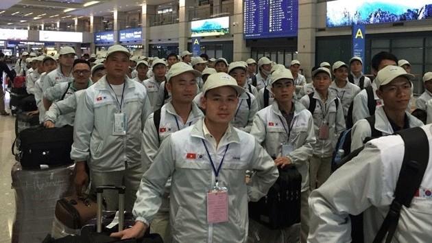 Sẽ tạm dừng tuyển lao động sang Hàn Quốc theo Chương trình EPS tại 90 quận, huyện