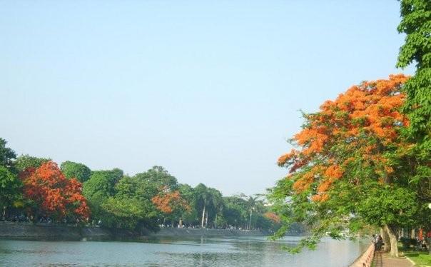 Hồ Tam Bạc - hồ trung tâm, biểu tượng của Hải Phòng - bị đem cho thuê. Ảnh Internet