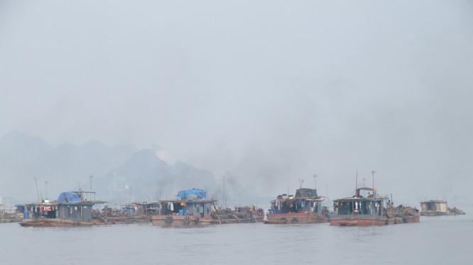 Một cụm tàu khai thác cát tại Hải Phòng. Ảnh Quốc Dũng
