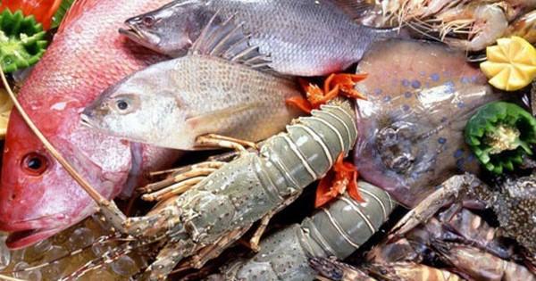 Phó Thủ tướng thường trực Trương Hoà Bình yêu cầu Bộ Y tế theo dõi tiếp hải sản tầng đáy biển 4 tỉnh miền Trung. Nguồn ảnh: Internet
