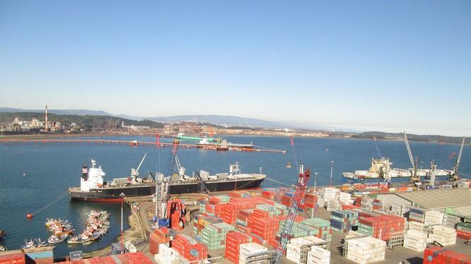 Một góc cảng Quy Nhơn. Nguồn: Báo Bình Định
