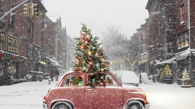 Các nhà sáng chế lấy cảm hứng thiết kế cây thông Giáng sinh mini này từ các cỗ xe tuần lộc. Nguồn: imotobank