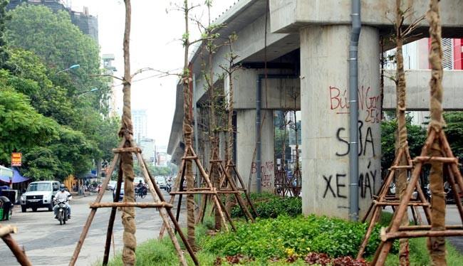 Hàng loạt cây đã được trồng dưới gầm cầu đường sắt Cát Linh - Hà Đông chỉ sau 2 đêm.