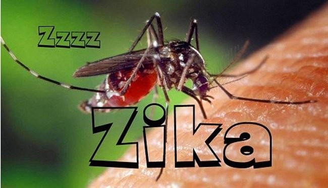 Tại Việt Nam đã phát hiện 5 trường hợp nhiễm virus Zika