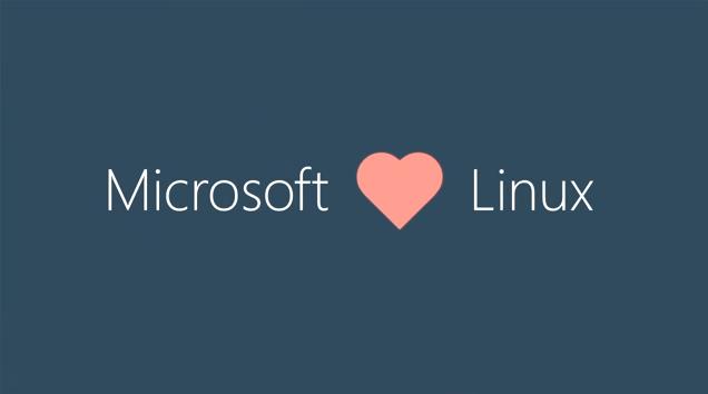 """Microsoft """"kết hôn"""" Linux - Ảnh: The ArsTechnica"""