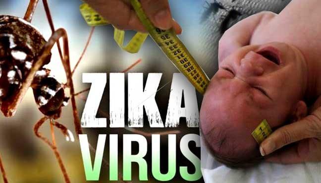 Tốc độ lây nhiễm vi rút Zika tại TP HCM cao.