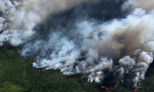 Đợt cháy rừng lớn được cho là hậu quả của biến đổi khí hậu. Ảnh: Futurism.
