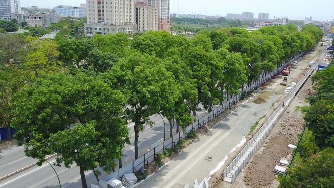 Theo kế hoạch việc chặt, hạ cây xanh 2 bên đường Phạm Văn Đồng trước ngày 30/9.