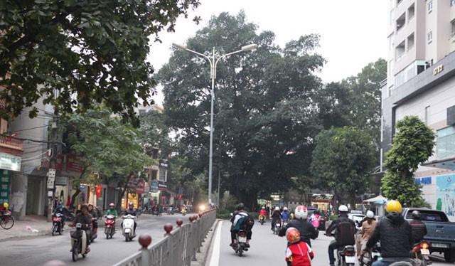 Hà Nội phê duyệt chỉ giới đường đỏ tuyến phố Vũ Trọng Phụng - Ảnh: VnMedia
