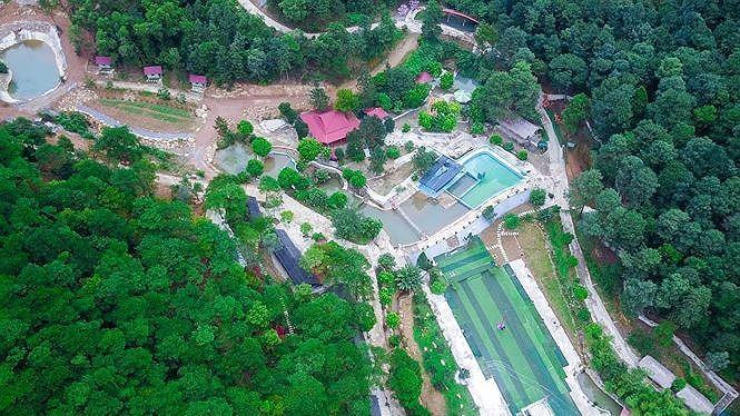 Rừng phòng hộ Sóc Sơn bị tàn phá nghiêm trọng do các sở ngành liên quan, các cấp chính quyền buông lỏng quản lý, thiếu trách nhiệm/ Ảnh: Tienphong.vn