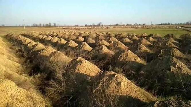 Thành phố tại Ukraina đào hàng trăm ngôi mộ để dọa người dân (Ảnh: OC)