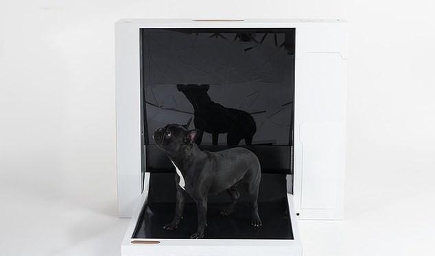 Inubox - nhà vệ sinh thông minh dành cho chó (Ảnh: Daily Mail)