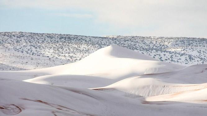 Tuyết phủ trắng một vùng sa mạc Sahara (Ảnh: Daily Mail)
