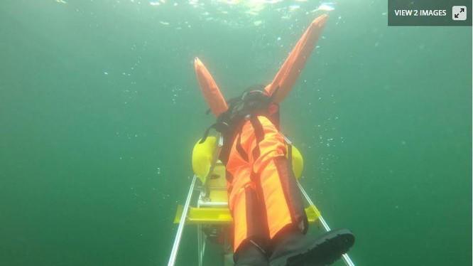 Robot cứ những người đuối nước (Ảnh: New Atlas)