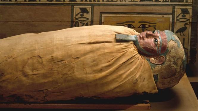 Bí ẩn về công thức ướp xác của người Ai Cập đã có lời giải (Ảnh: Mental Floss)