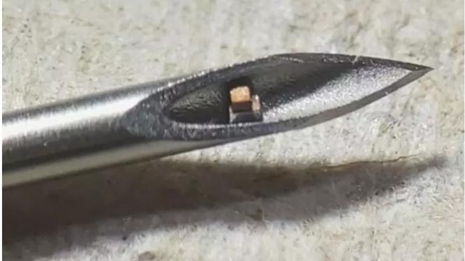 Chip đơn nhỏ nhất thế giới (Ảnh: NewAtlas)