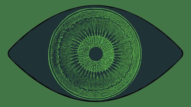 Phương pháp mới giúp cải thiện thị lực cho người khiếm thị (Ảnh: Technology Review)