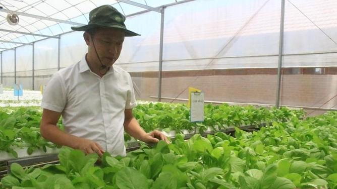 """Chuyển đổi số trong nông nghiệp: Tạo """"xung lực"""" để ngành nông nghiệp phát triển"""
