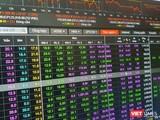 Nhiều cổ phiếu chứng khoán tăng mạnh trong phiên giao dịch ngày 23/8/2021