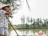 Ông Nguyễn Tiền, trú thôn Vạn Lăng, xã Cẩm Thanh, TP Hội An chưa thoả đáng với số tiền đền bù và chuyển đổi nghề nghiệp khi bị thu hồi hơn 6.000m2 diện tích nuôi trồng thỉu sản