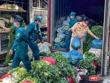Sau xanh được nhập về các container tại các điểm cung ứng do lực lượng Công an TP Đà Nẵng đảm nhiệm (ảnh Hưng Lợi)