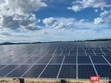 Chủ đầu tư dự án điện mặt trời đi đâu, về đâu?