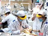 Sinh viên Khoa Răng Hàm Mặt - ĐH Y Dược TP.HCM làm việc tại khoa (Ảnh: Hòa Bình)