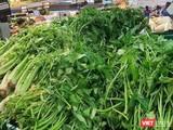 Nguồn cung ứng rau xanh và thực phẩm tươi sống cho TP.HCM bị thiếu trầm trọng trong những ngày vừa rồi - Ảnh: Hoà Bình