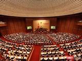 Theo dõi bầu cử Quốc hội và HĐND các cấp qua Zalo.