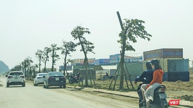 Có 8 sàn giao dịch BĐS tại Đà Nẵng đã chấm dứt hoạt động