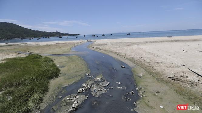 Nước thải ô nhiễm, hôi thối đầu độc biển Đà nẵng