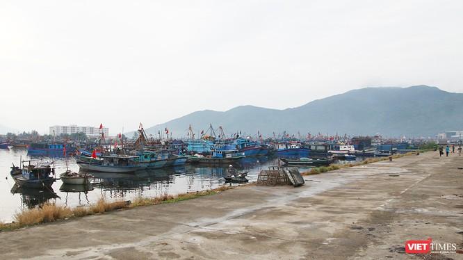 Thủ tướng Chính phủ vừa đồng ý dừng thực hiện Dự án đầu tư xây dựng tuyến luồng vào Khu bến cảng Thọ Quang, Cảng biển Đà Nẵng.