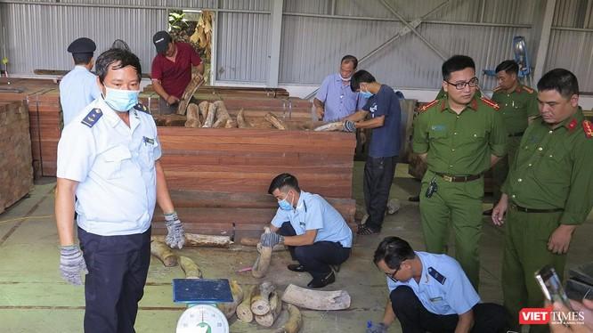 Cơ quan chức năng kiểm đếm lô hàng ngà voi nhậu lậu tại cảng Đà Nẵng