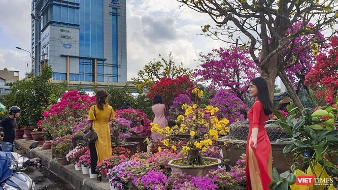 Một góc chợ hoa xuân Tết Canh Tý ở Đà Nẵng