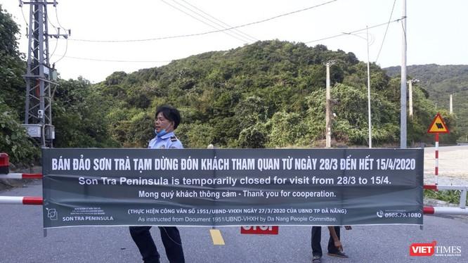 Bán đào Sơn Trà dừng phục vụ khách tham quan kể từ 28/3 (ảnh Minh Hải)