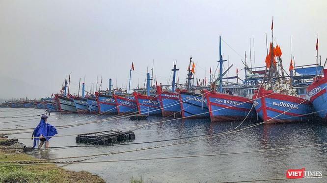Tàu thuyền về neo đậu tại âu thuyền Thọ Quang (Đà Nẵng) để tránh bão số 5