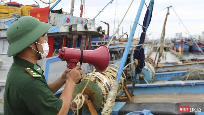 Lực lượng bộ đội biên phòng kêu gọi, sắp xếp tàu thuyền neo đậu tránh bão tại âu thuyền Thọ Quang (Đà Nẵng).