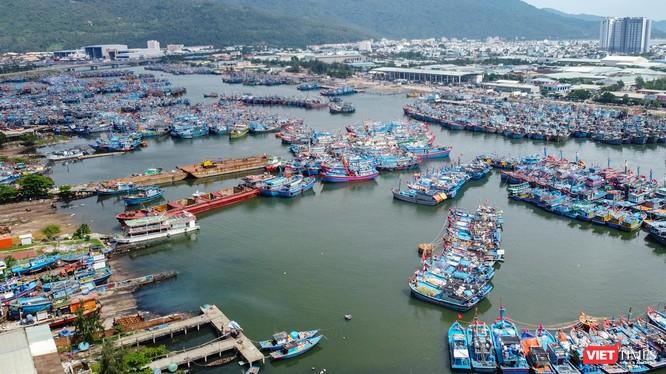 Một góc âu thuyền Thọ Quang (TP Đà Nẵng), nơi được xem là điểm nóng về môi trường của TP suốt chục năm qua (ảnh Nguyễn Trình)