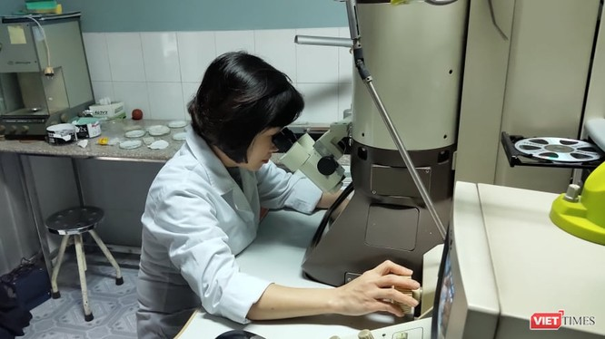 Nghiên cứu virus Corona trong phòng thí nghiệm của Viện Vệ sinh Dịch tễ Trung ương. Ảnh: Minh Thúy