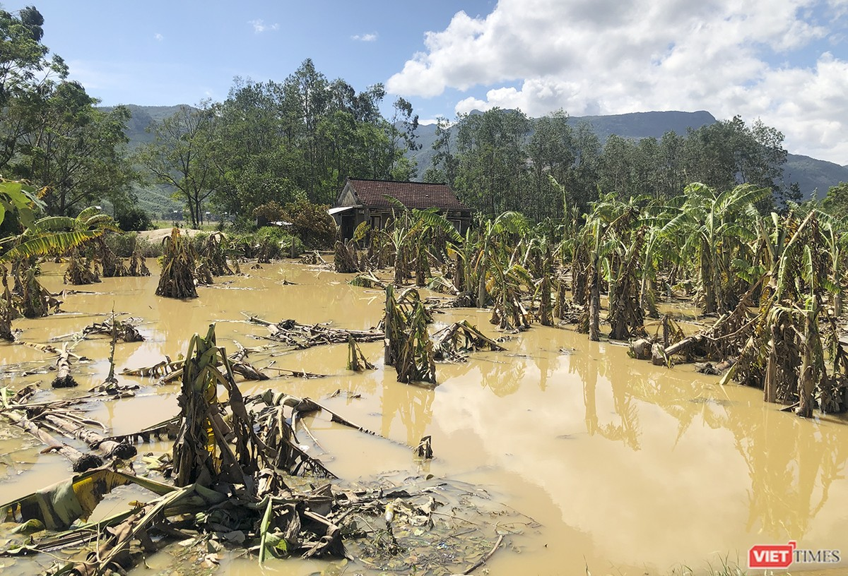 Quảng Nam: Thủy điện Đắk Mi 4 xả lũ, hạ du sông Vu Gia chìm trong nước ảnh 17