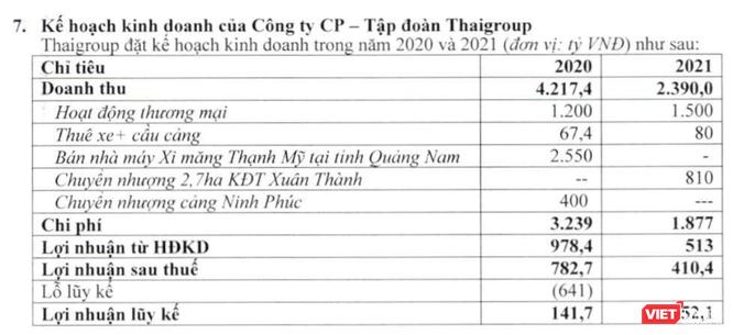 Thaigroup trước ngày về với Thaiholdings ảnh 1