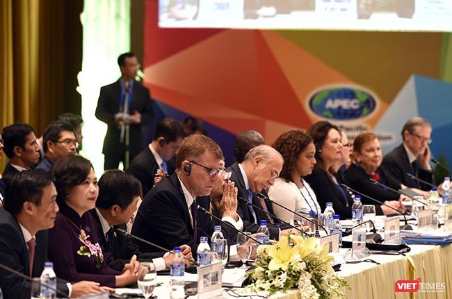 Dưới sự chủ trì của Bộ trưởng Bộ Tài chính Việt Nam, các Bộ trưởng Tài chính, Trưởng đoàn và đại biểu cấp cao đại diện của 21 nền kinh tế thành viên APEC đã cùng thảo luận các vấn đề liên quan đến Đầu tư dài hạn cho cơ sở hạ tầng; Chống xói mòn cơ sở thuế và chuyển dịch lợi nhuận; Tài chính và bảo hiểm rủi ro thiên tai;Và Tài chính bao trùm.