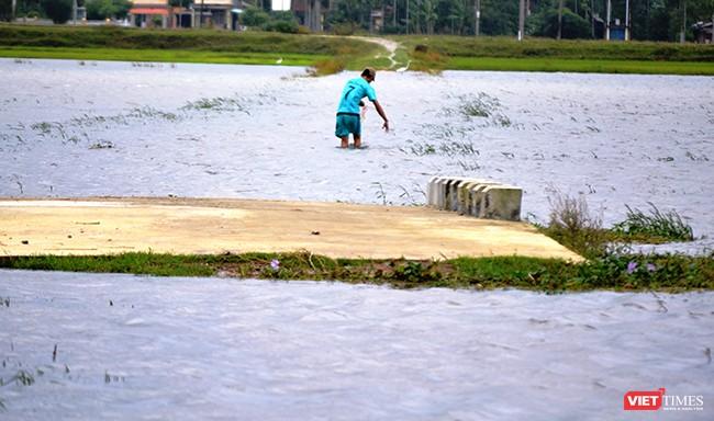 Một số khu vực tại Quảng Nam bị chia cắt cục bộ do mưa lũ