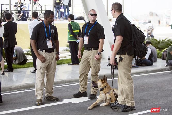 Chó nghiệp vụ cũng xuất hiện làm nhiệm vụ