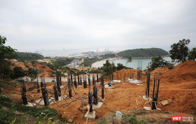 thanh tra toàn diện việc chấp hành các quy định của pháp luật về quản lý và sử dụng đất bảo vệ và phát triển rừng, bảo vệ môi trường, xây dựng, xây dựng, báo cáo Thủ tướng Chính phủ trước ngày 31/3/2018.